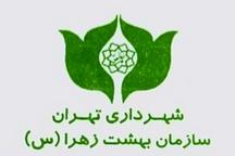 سرپرست جدید سازمان بهشت زهرا(س) منصوب شد