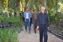 قانون ممنوعیت بکارگیری بازنشستگان مانع تداوم فعالیت شهردار بوشهر شد