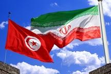 سفیر تونس: مبادلات تجاری ایران و تونس در سال آینده میلادی شکوفا می شود