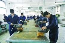 افزایش 14درصدی مهارت آموزی در چهارمحال و بختیاری در دولت یازدهم