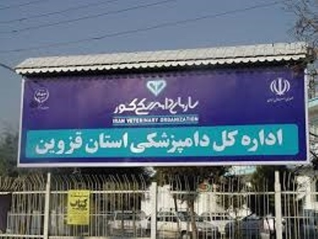 200 کیلوگرم آلایش دامی غیربهداشتی درشهرستان بوئین زهرا معدوم شد