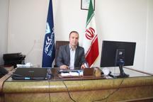 بیش از 23000 کیلوگرم فراورده خام دامی در زنجان معدوم شد