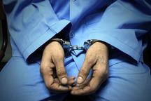 اخلالگر نظام تولیدی کشور در اراک دستگیر شد