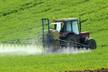 توسعه کشاورزی خراسان شمالی با افزایش 357درصدی تولید گندم