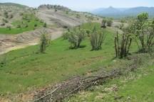 چهارهزار و 237 هکتاراز اراضی ملی در اردبیل پس گرفته شد
