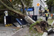 اروپا در طوفان+ تصاویر
