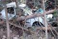 کودک هفت ساله در برخورد خودرو با درخت در مرزن آباد جان باخت