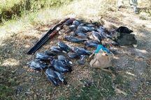 هشت شکارچی متخلف به مراجع قضایی ایوان معرفی شدند