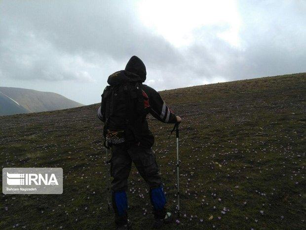 کوهنورد کرمانشاهی در ارتفاعات اندیکا مفقود شد