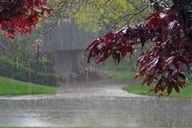 بارش پاییزی در 9 شهرستان خراسان رضوی  باران هوای مشهد را شست