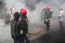 درختان اتوبان شهید آقابابایی اصفهان آتش گرفت
