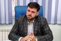رئیس هیات شنای استان تهران انتخاب شد