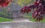 هدف طرح تهک هواشناسی در بخش کشاورزی یزد اطلاعرسانی است