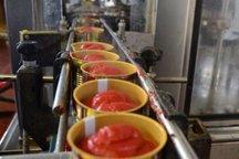 هشت مورد جواز تاسیس صنایع تبدیلی در قم صادر شد