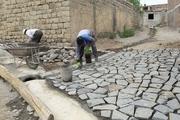 دهیاری های کردستان 696 طرح عمرانی را اجرا کردند