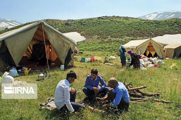 ۱۱ تعاونی و اتحادیه عشایری در آذربایجانغربی فعال است
