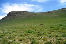ممیزی مراتع 350 خانوار عشایری شیروان در مراوه تپه انجام شد