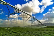 5050 هکتار اراضی سلسله به سیستم آبیاری نوین تجهیز شدند