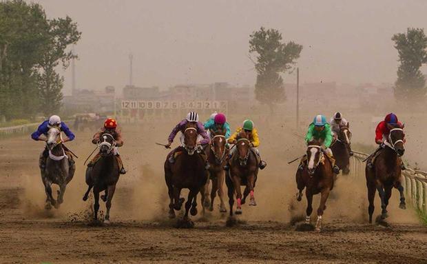 هفته سوم مسابقات اسبدوانی کورس بهاره گنبد برگزار شد