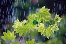 باران 15 شهرستان خراسان رضوی را فراگرفت
