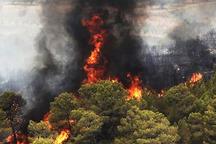استفاده از داده های فضایی و اینترنت برای مهار آتش در جنگل گلستان