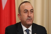 ترکیه: کشتن یک شهروند سعودی توسط ۱۵ نفر بدون صدور دستور امکانپذیر نیست