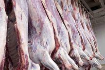 کشتارگاه فردیس 50 درصد گوشت قرمز البرز را تامین می کند