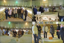 سایت موزه بندیان درگز میراث ارزشمند باستان شناسی است