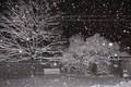 برف و باران کرمانشاه را در برمی گیرد کاهش سه تا هفت درجه ای دمای هوا