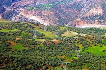 300 سمن در بخش حفاظت از عرصه های ملی فعالیت دارند
