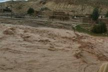 دبی آب رودخانه تلار سه برابر حد نرمال شد