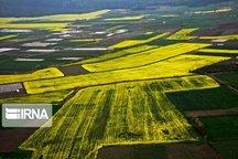 ۱۱۳ هزار هکتار طرح کاداستر در اردبیل در دست اجرا است
