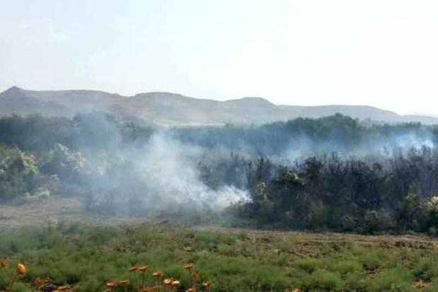 5.5 هکتار از تالاب نوروزلوی میاندوآب در آتش سوخت