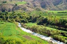 1900 هکتار از اراضی ملی کردستان به بهره برداران واگذار شد