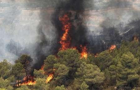 آتش سوزی در منطقه حفاظت شده کوه دیل گچساران مهار شد