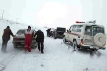 331 دستگاه خودروی گرفتار در کولاک قزوین امدادرسانی شدند