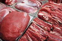 گوشت منجمد در گیلان توزیع می شود