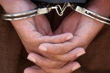 عامل تخریب 12 خودرو در اراک دستگیر شد