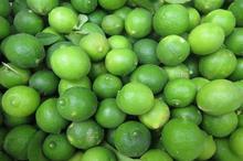 بیش از 80 هزار تن میوه در کهگیلویه و بویراحمد تولید شد