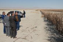 460میلیارد ریال برای کنترل ریزگرد دریاچه ارومیه هزینه می شود