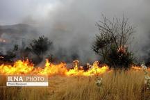 8 هکتار از اراضی مرتعی آبیکعلیا طعمه حریق شد  سرایت آتش به دامنه پیغمبرکوه