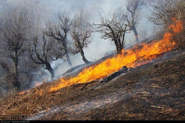 ۵۰ فقره حریق در عرصههای منابعطبیعی کرمان رخ داده است