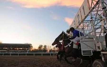 لغو مسابقات کورس بهاره گنبد و آق قلا به دلیل حادثه معدن آزادشهر