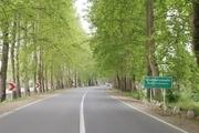 معاون فرماندار: تونل سبز فومن، اثر میراث طبیعی است