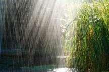 سامانه بارشی در راه استان بوشهر