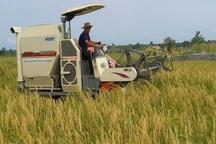 بیش از 6 میلیارد ریال تسهیلات به کشاورزان آستارا پرداخت شد
