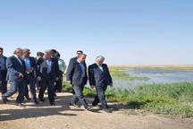 مشکل حق آبه تالاب صالحیه در حال پیگیری است