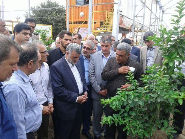 وزیر جهاد کشاورزی از اولین گلخانه لیموترش کشور بازدید کرد