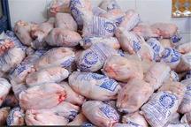 بیش از 10 تن مرغ فاسد در رشت امحاء شد