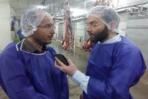 طیور تخم گذار علیه آنفلوانزای مرغی واکسینه می شوند